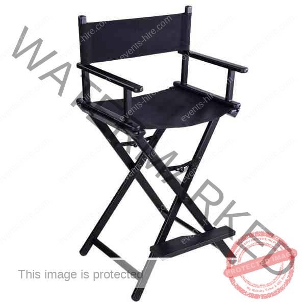 makeup directors chair